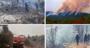 المدير الجهوي للحماية المدنية بجندوبة: السيطرة نسبيا على الحرائق التي نشبت أمس